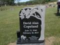 Copeland. Davis A